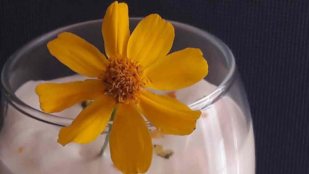 Recette: Mousse aux agrumes et Tagete lemonnii