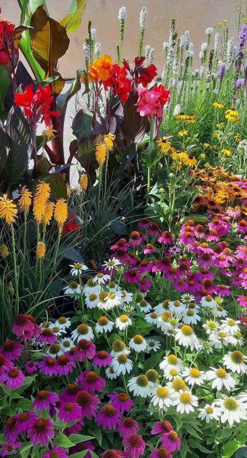 Decoration_vegetale_arc_en_fleurs
