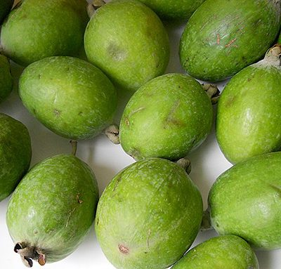 Feijoa_fruit